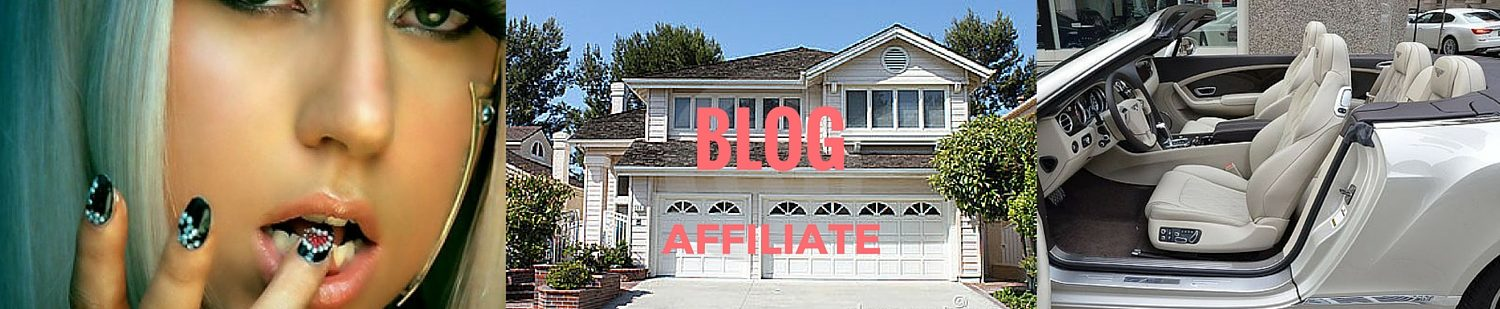 Blog Affiliate is the way to high earnings